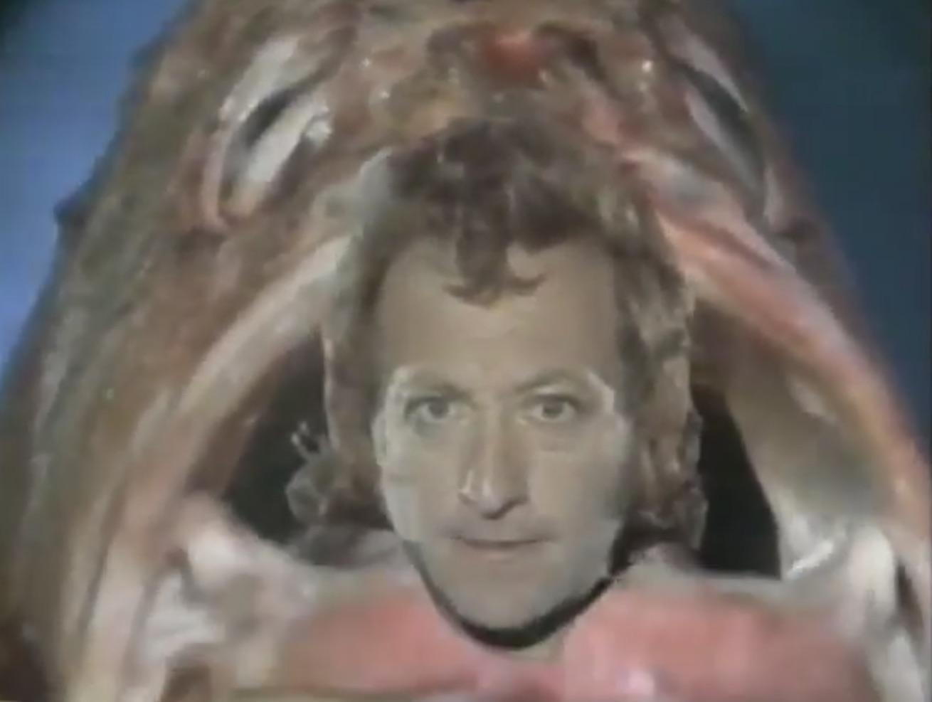 shayne-fish